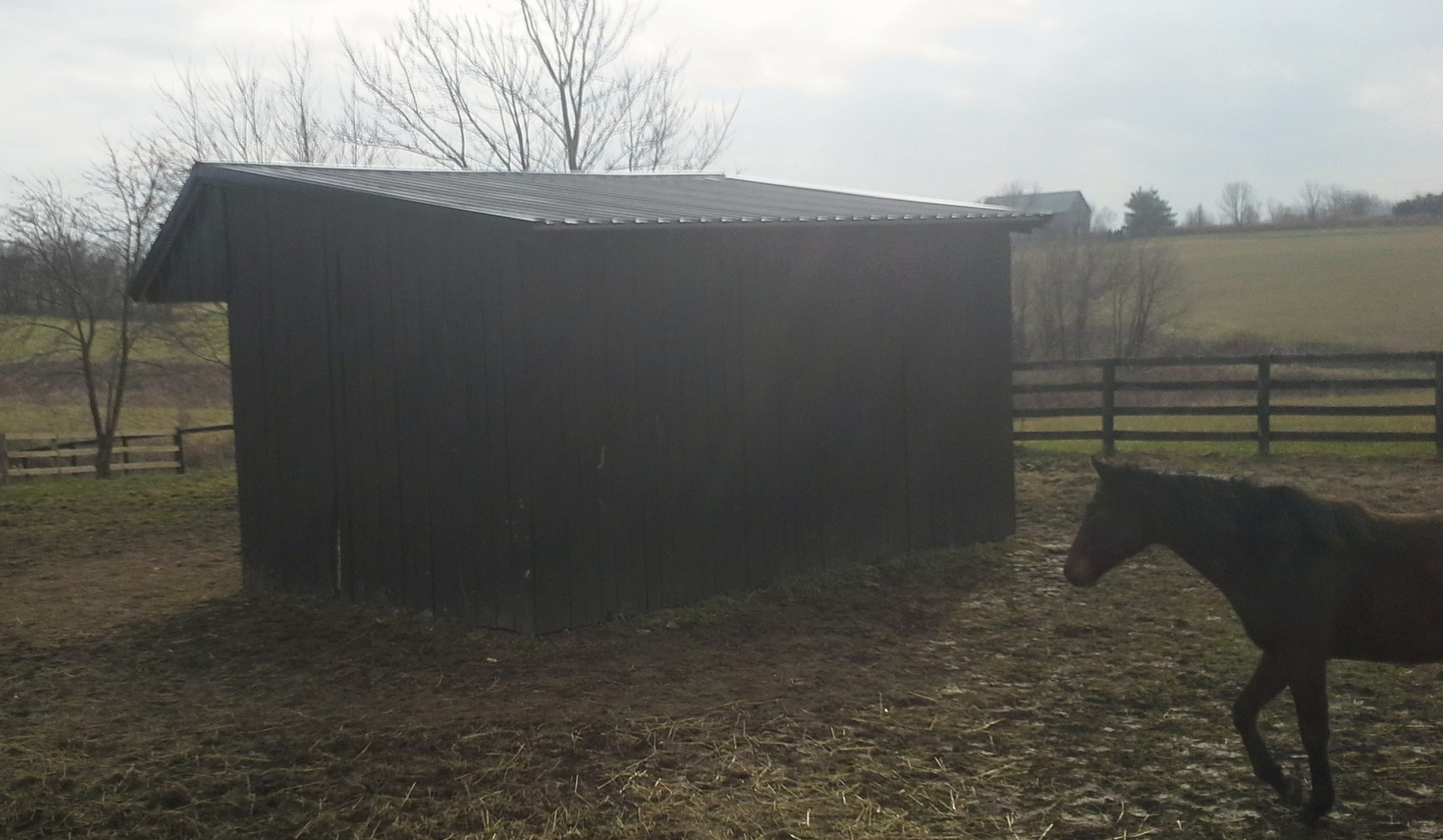 Re Roofing A Horse Stall Along With Building A 4 Shed On